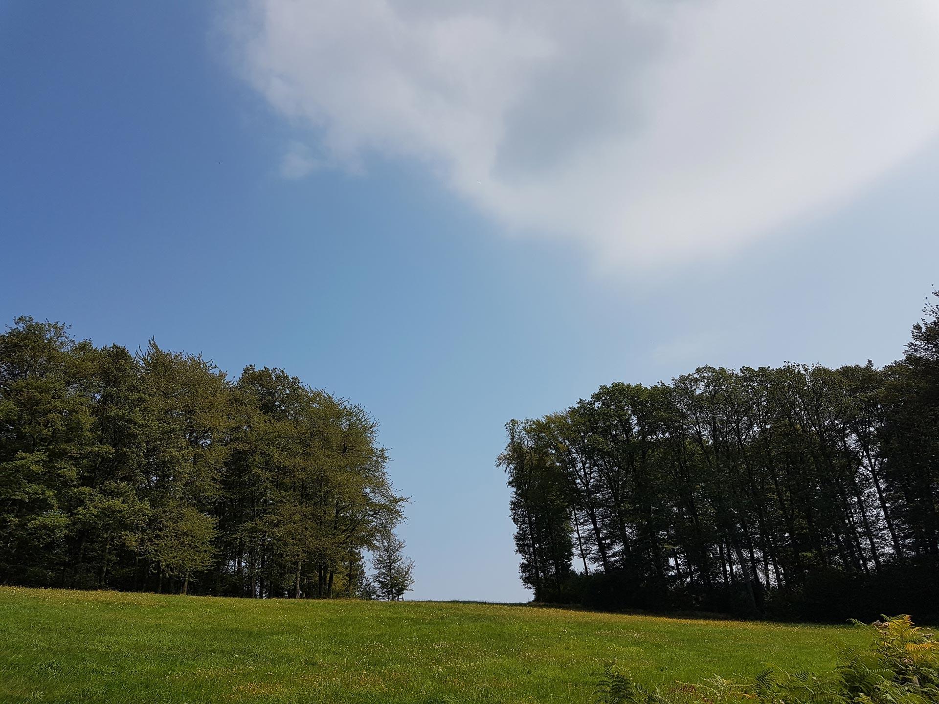 Kontakt Pflegeteam Kleeblatt Arbeitgeber Stellenangebot Marialinden Bergisches Land Overath